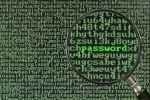 bigstockphoto_Hacking_For_Password_1213099